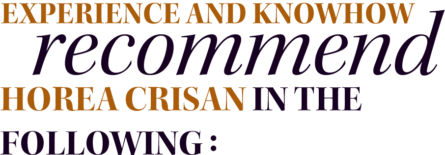 Experience and knowhow recommend Horea Crisan in the following: